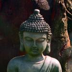 Fall 2019: Buddhism — RELB 2100