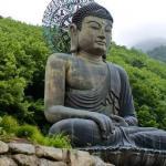Fall 2019: Buddhist Meditation Traditions — RELB 2900